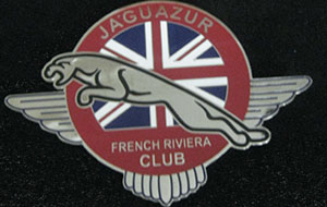 badges de calandre